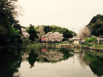 0408_結縁寺.jpg